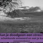 Kun je doodgaan aan stress?