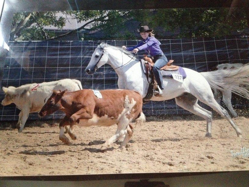 mijn paardenhobby