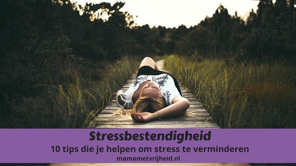stressbestendigheid