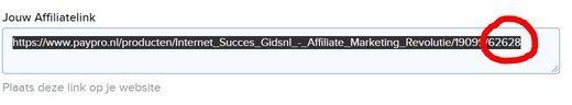 affiliate website maken affiliate link
