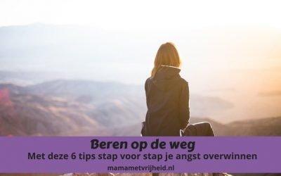 Beren op de weg- Met deze 6 tips stap voor stap je angst overwinnen